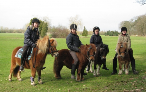 Ponyfarm Tilburg